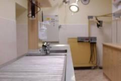 Клиничен преглед във ветеринарна клиника