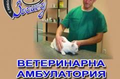 Ветеринарна амбулатория Зоомед - Перник