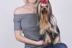 Фризьорски салон за кучета Дог Стар София