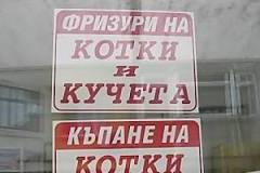 Фризьорски салон за домашни любимци Бургас