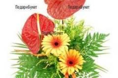 Доставка на цветя Враца