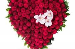 Доставка на цветя Плевен