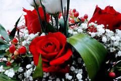 Доставка на цветя Русе