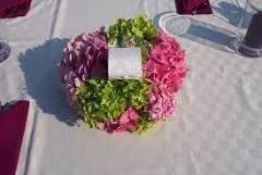 """Сватбена агенция """"Хармония"""" Силистра"""