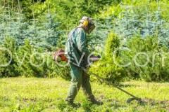 Почистване на дворове в София