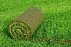 Озеленяване и декорация София